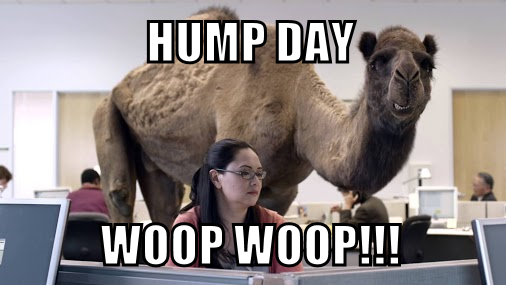 hump day!.png