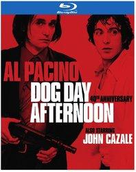 Dog Day Afternoon.jpg