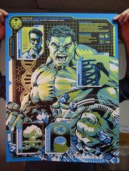hulk_full_grande.jpg