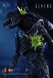 HT_Aliens_7.jpg