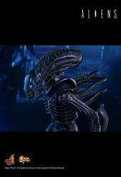 HT_Aliens_9.jpg