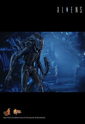 HT_Aliens_11.jpg