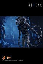 HT_Aliens_12.jpg