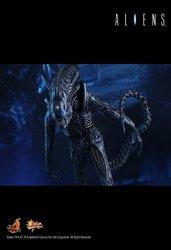 HT_Aliens_13.jpg