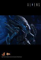 HT_Aliens_14.jpg