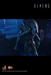 HT_Aliens_15.jpg