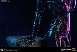dc-comics-catwoman-premium-format-300270-11.jpg