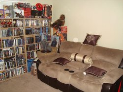 My Theater Room_6.JPG