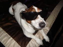 Cool Cowboy!.JPG