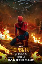 Spider-Man-Homecoming-Chinese-Poster.jpg