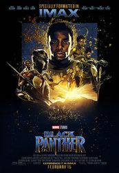 kinopoisk.ru-Black-Panther-3120880.jpg