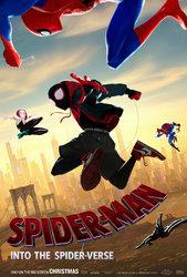 spider-man-into-the-spider-verse-poster2.jpg