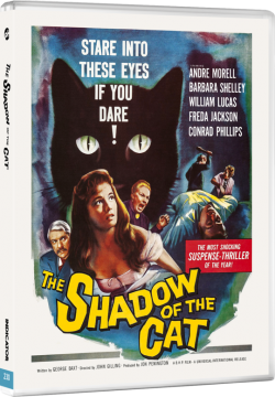 230_THE_SHADOW_OF_THE_CAT_BD_3D_packshot_72dpi_1000px_transp_540x.png
