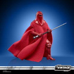 STAR WARS THE VINTAGE COLLECTION 3.75-INCH EMPORER'S ROYAL GUARD Figure - oop (1).jpg