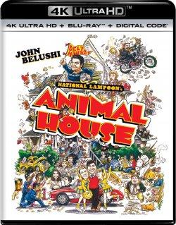 animal_house-4k.jpg