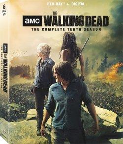 Walking_Dead_S10-br.jpg