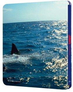 Jaws 4 Back.jpg