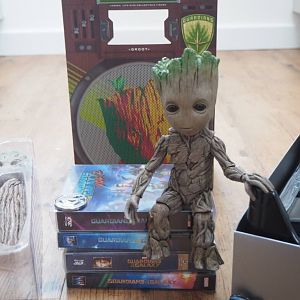 HotToys_Groot10