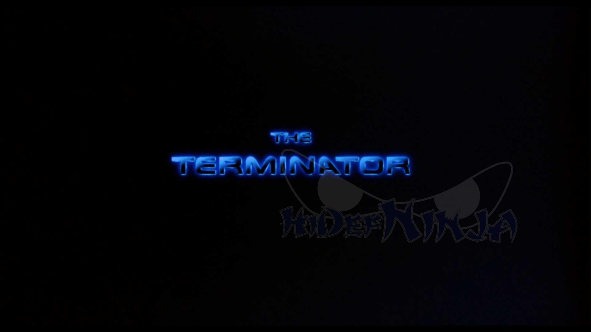 TheTerminator-1