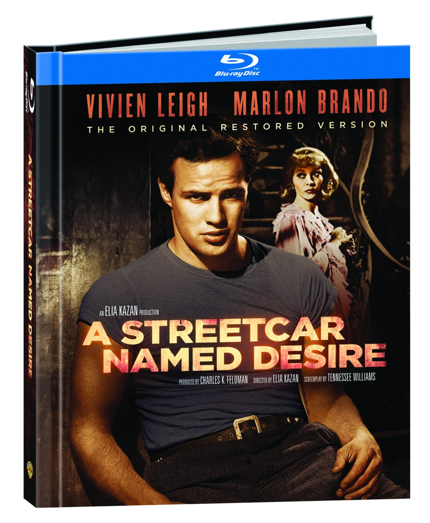 an analysis of the general structure of a streetcar named desire a play by tennessee williams