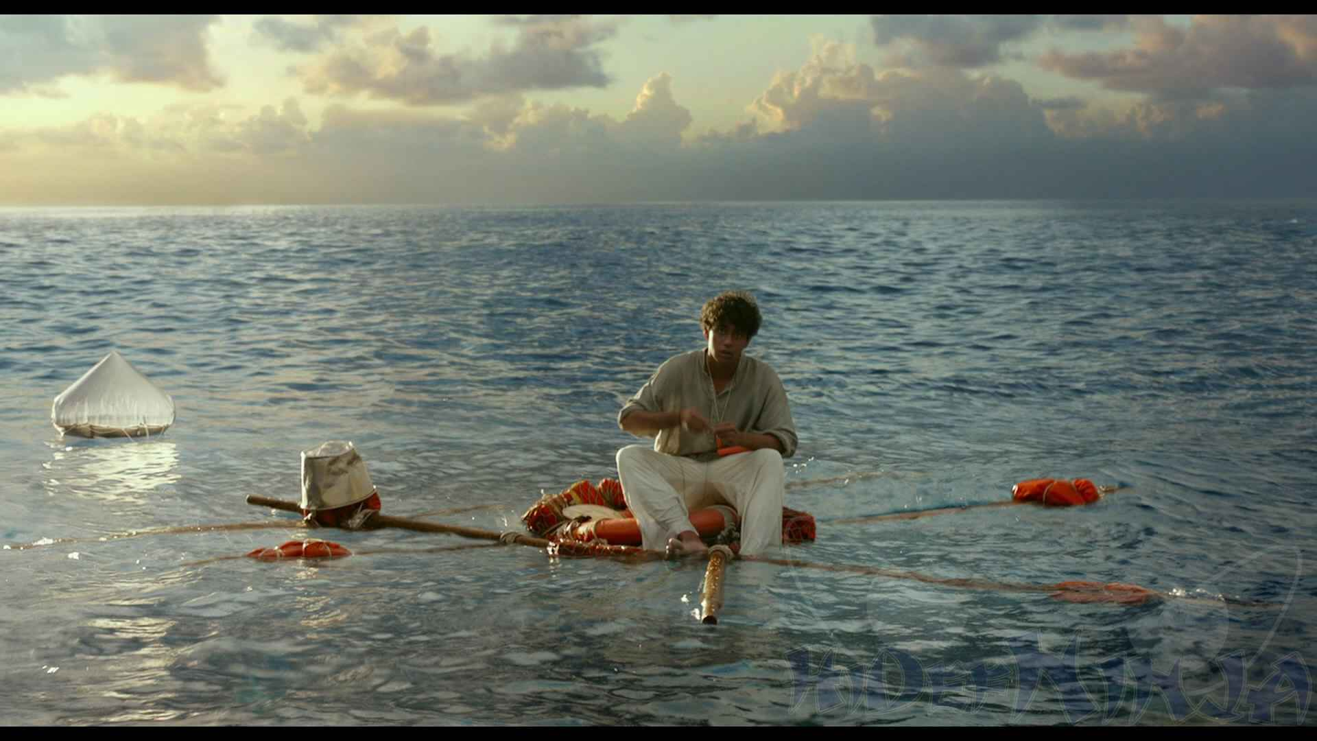 life of pi blu ray review hi def ninja blu ray steelbooks life of pi