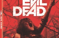 Evil dead us cover