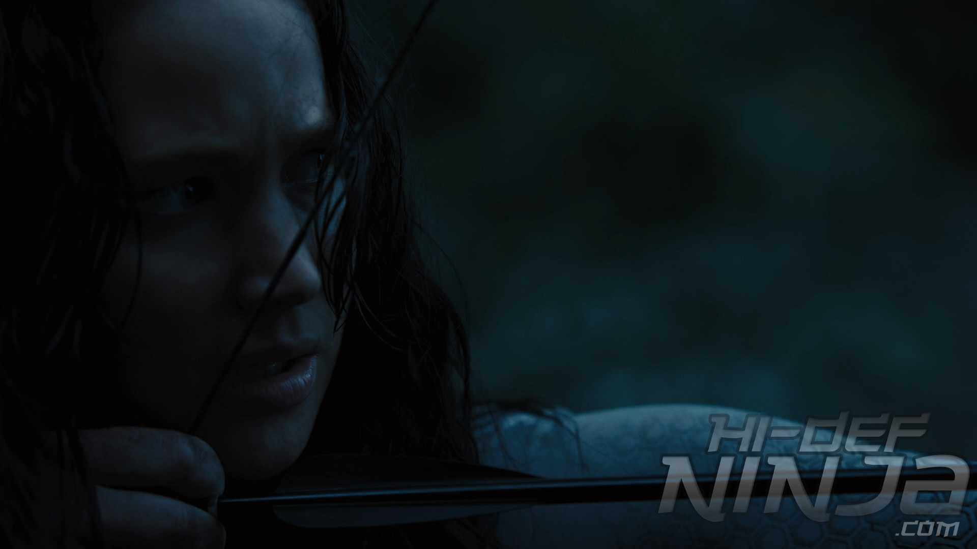 CatchingFire-7