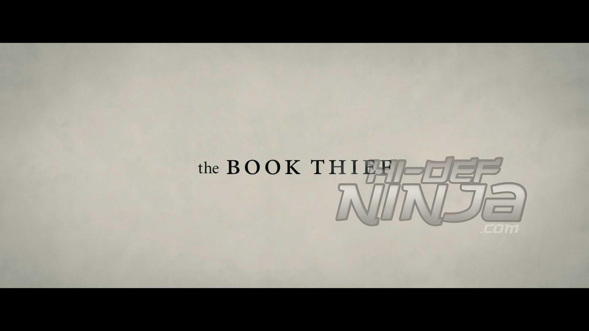 TheBookThief-1