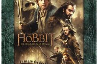 hobbit desolation of smaug extended cover