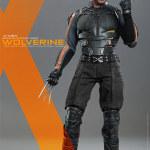 wolverine XDOFP HT 02
