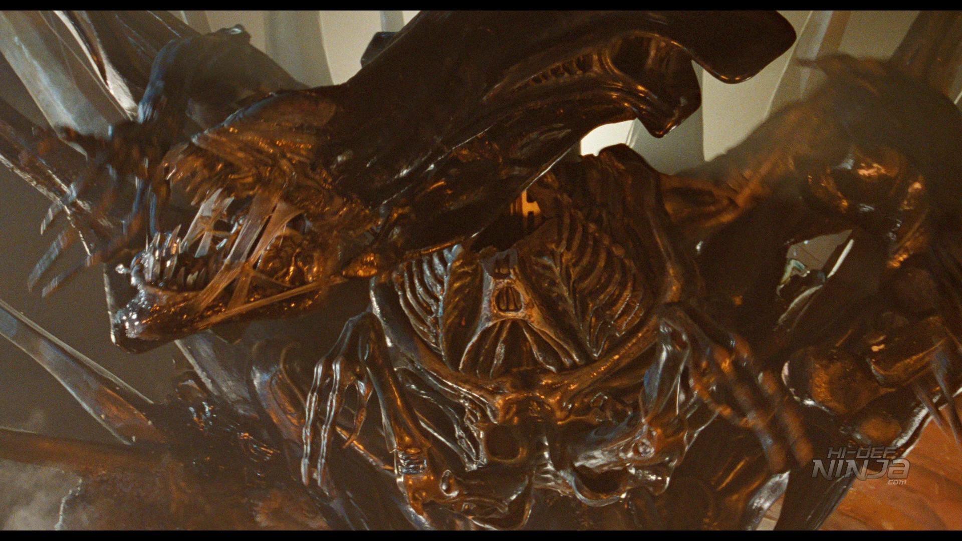 Aliens-HiDefNinja (13)