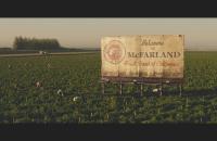 mcfarland USA review 01