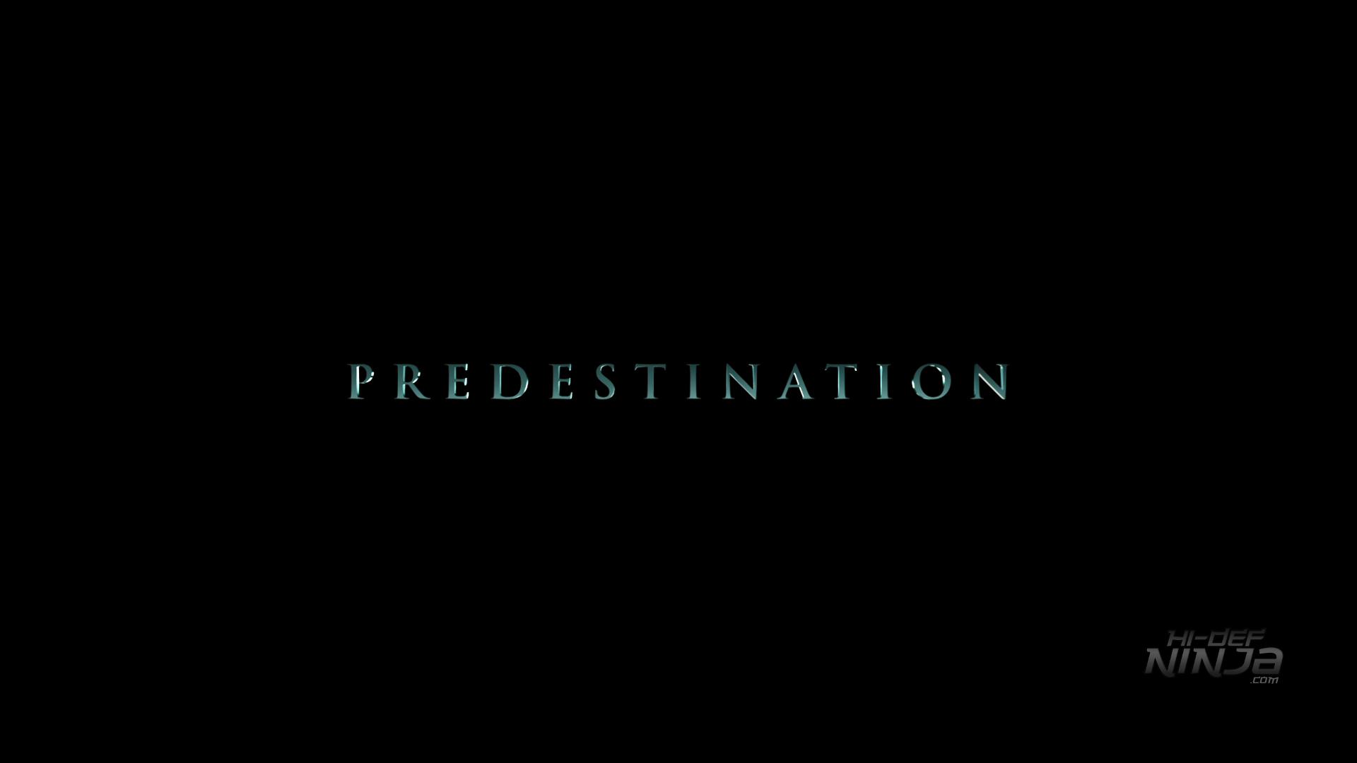 Predestination_HiDefNinja (1)