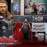 Thor-AOU-HT-17