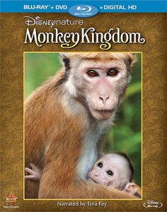 monkey kingdom cover