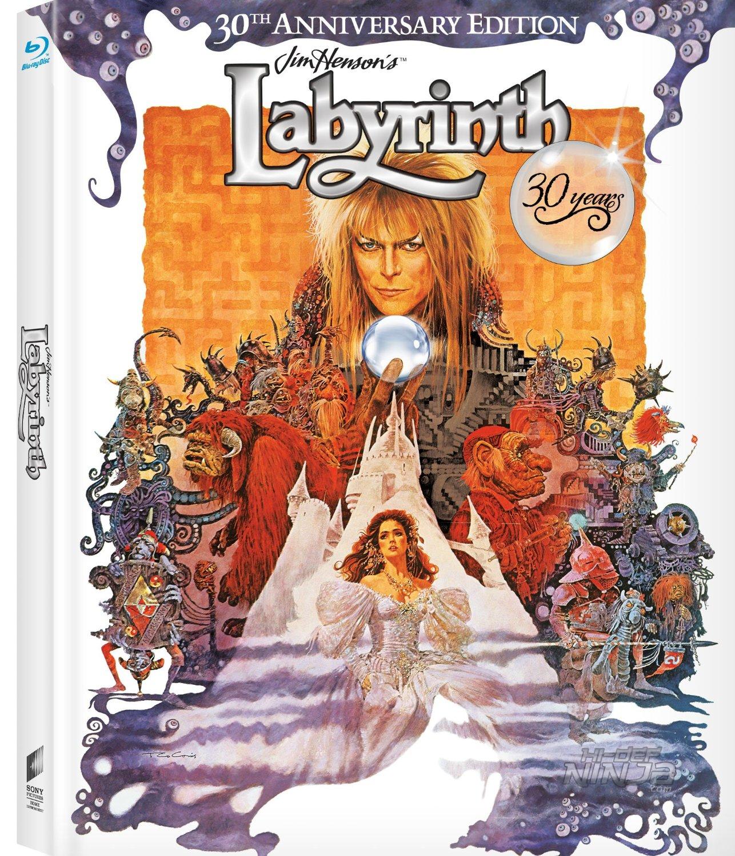 Labyrinth Digibook