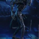 alien warrior-HT-01