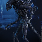 alien warrior-HT-04