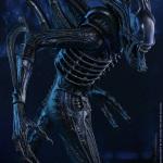 alien warrior-HT-10