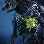 alien warrior-HT-12