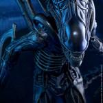 alien warrior-HT-13