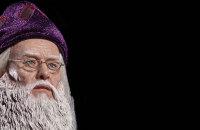 dumbledore features