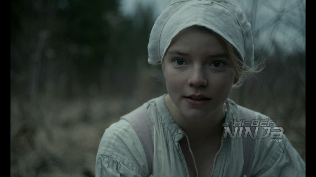 the witch-bluray review-2016-11