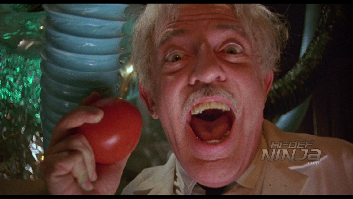 return of the killer tomatoes-bluray review-2016-01