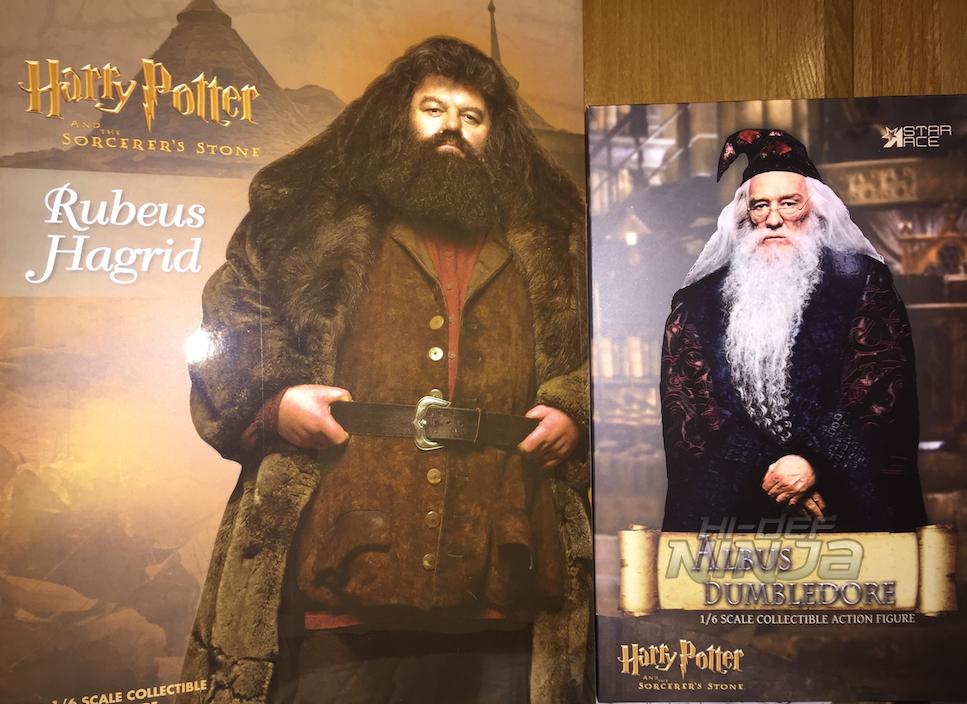 dumbledore hagrid banner 02