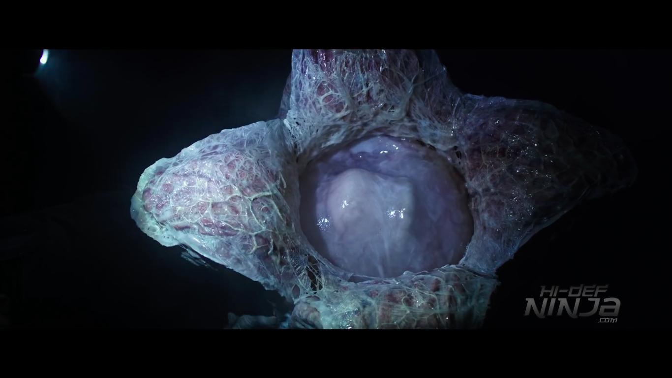 alien-covenant-trailer-screen-2016-04