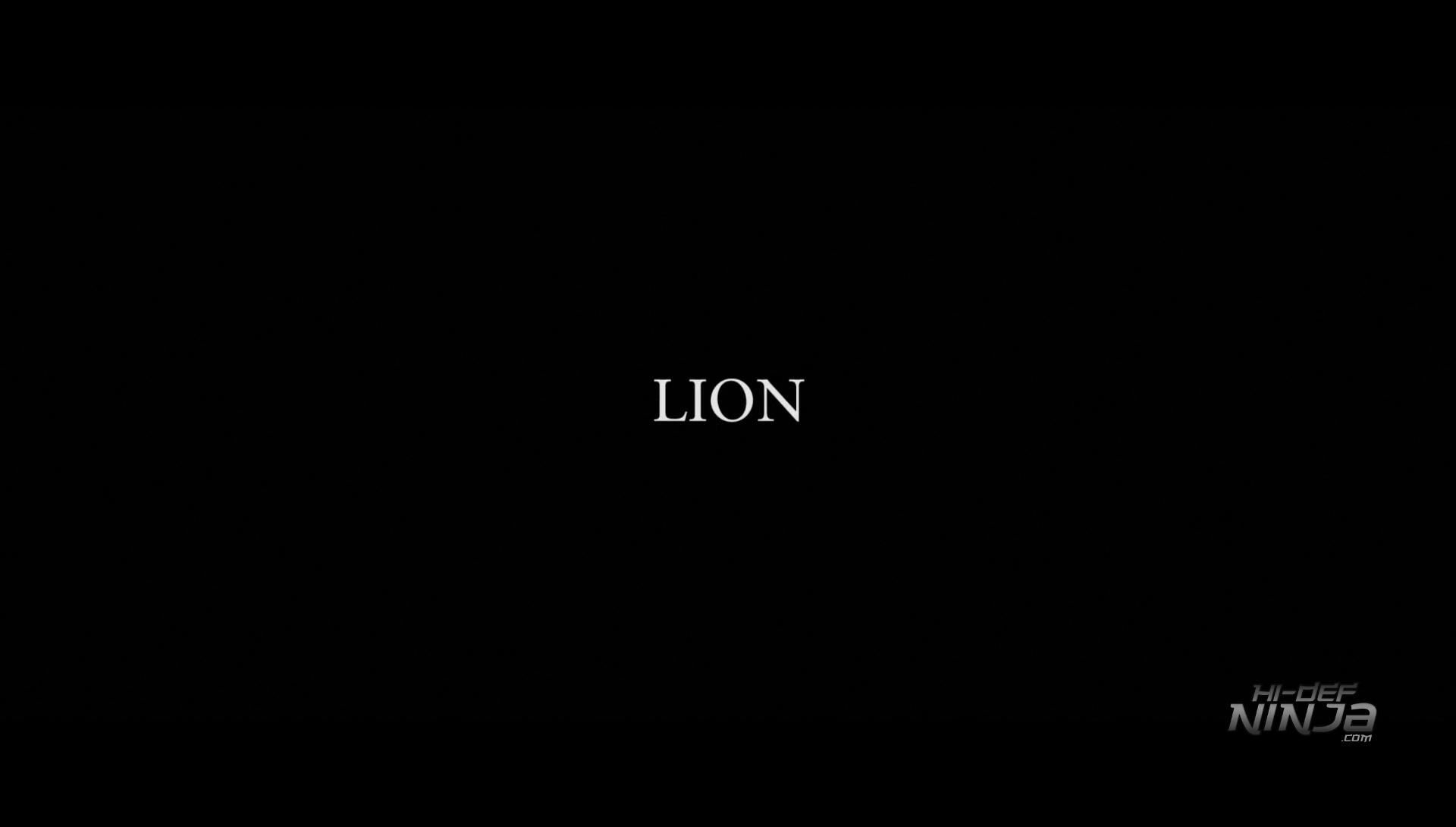 Lion-HiDefNinja (1)